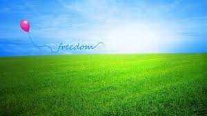 freedom 4