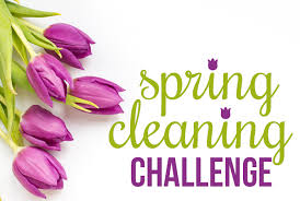 spring cleaning 1
